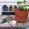 Praktische Gartenwerkzeuge im Überblick