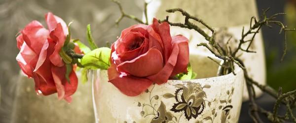 Tipps für Überwinterung der Gartenpflanzen